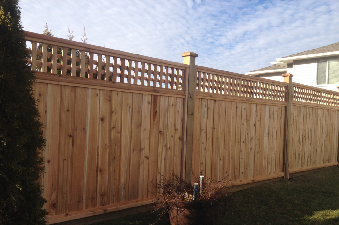 BEST VALUE: LATTICE CEDAR FENCE PANELS